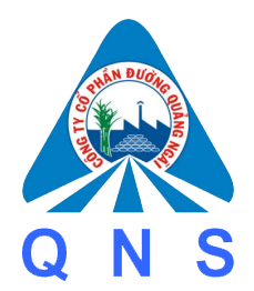 QNS logo